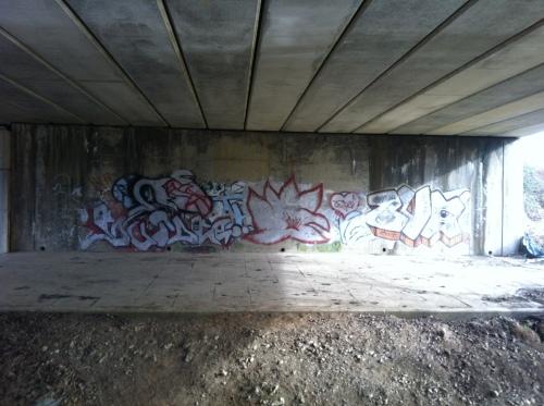 20120220-172541.jpg