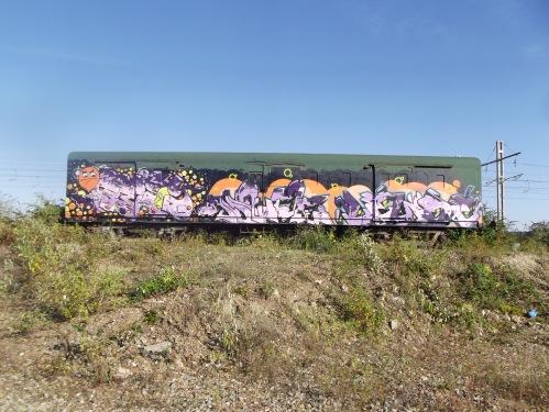 DSCF1803