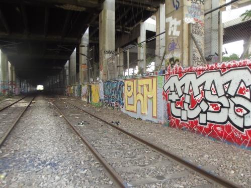 DSCF1842